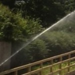 Equestrian Irrigation Palm Beach