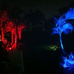 Boynton Beach landscape lighting 1