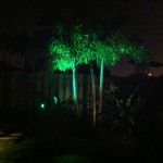 Boynton Beach landscape lighting 2
