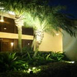 Boynton Beach landscape lighting 4