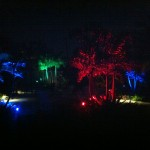 Boynton Beach landscape lighting 9