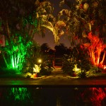 Boynton Beach landscaping lighting 11