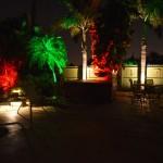 Boynton Beach landscaping lighting 14