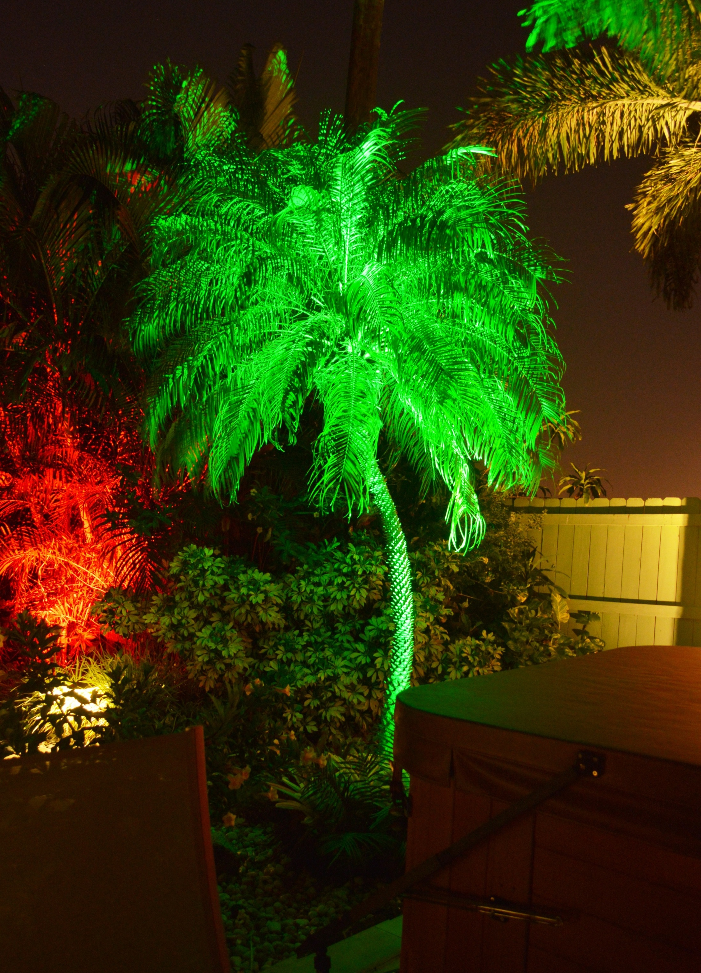 Boynton Beach landscaping lighting 3
