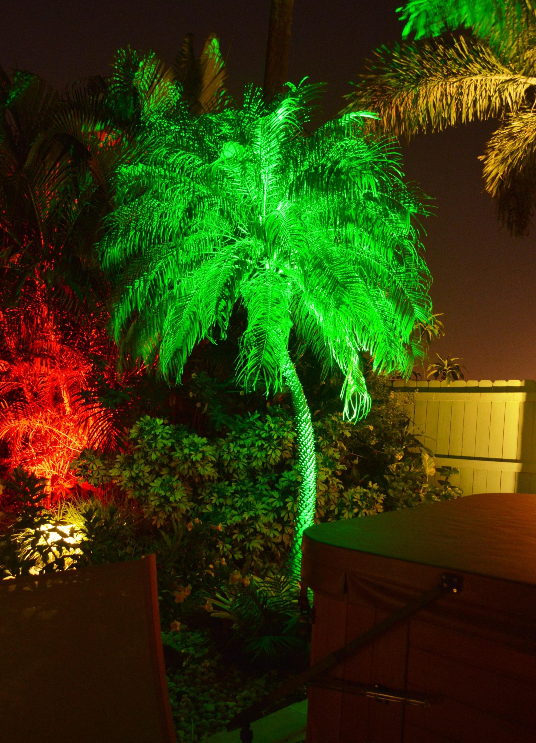 Boynton Beach landscaping lighting 3