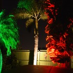 Boynton Beach landscaping lighting 4