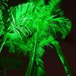 Boynton Beach landscaping lighting 7
