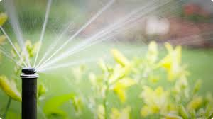Water Conservation Made Easy