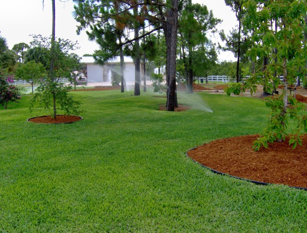 Call Us for Help with Sprinklers South Florida