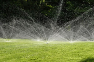 Get Professional Help with Your Sprinklers West Palm Beach