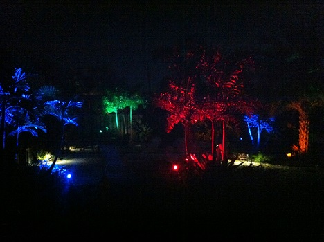 Improve Your Property with a Palm Beach Landscape Lighting System